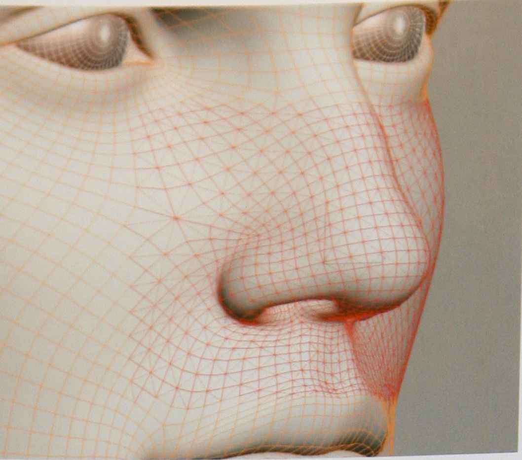 How Topology Human Face